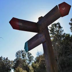 14a | TRAVERSATA DEL MONTE PISANO – Passo passo da ovest a est – 1° tappa
