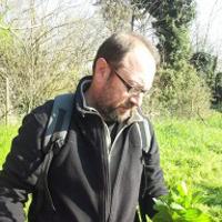 Maurizio Gioli