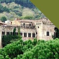 49 | VERSO LA CURVATURA DELL'ORIZZONTE da Buti